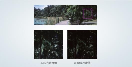 3.8D光密度值 - Epson Expression 12000XL产品功能