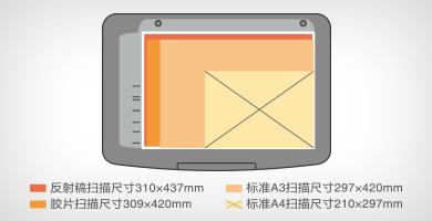 超A3尺寸扫描 - Epson Expression 12000XL产品功能